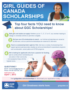 scholarship poster 2013