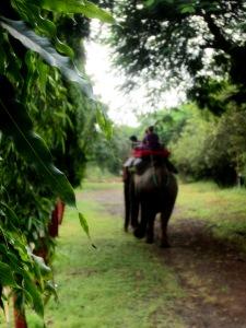 Laxmi Sangam